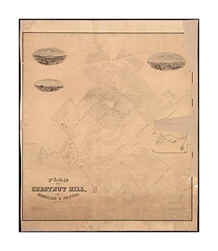 1856 Wall Map Newton Plan Of Chesnut Hill  In Brookline   Newton  August 1856 Includes Inset Map Ready To Frame Historic Antique Vintage Reprint Middlesex