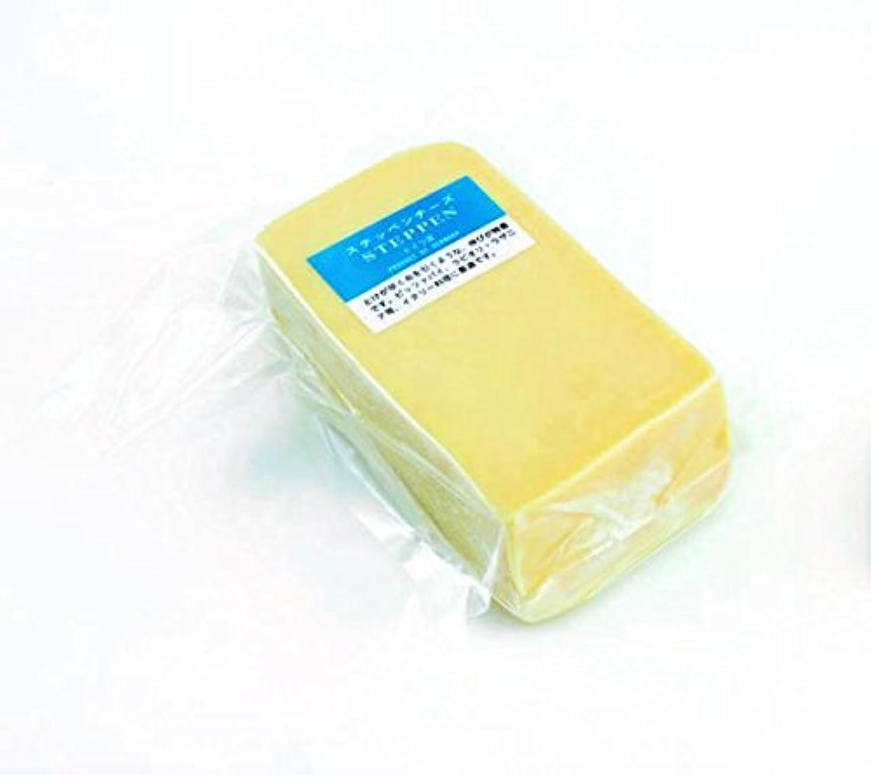 学期買い物に行く見えるさけるチーズ 100g 3個