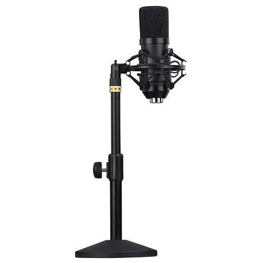 YYZLG Moda,Live Karaoke Anchor Microphone Stand Juego de ...