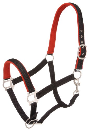 - Tough 1 Nylon Padded Halter with Satin Hardware, Black, Horse