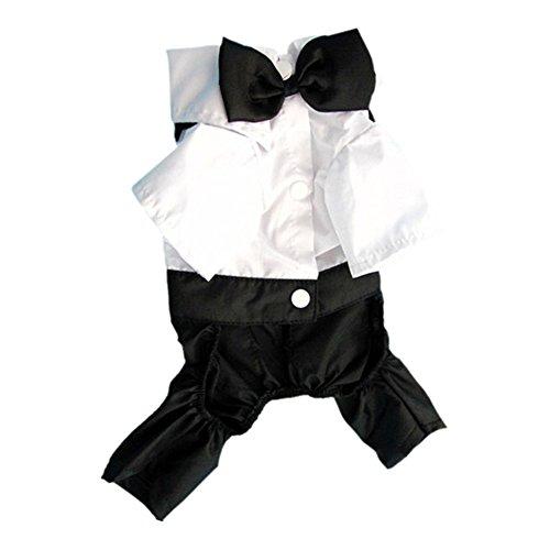 Edal Clothing Prince Tuxedo Costume