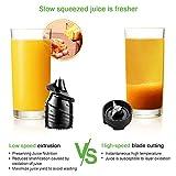 Juicer, Slow Masticating Juicer, Cold Press Juicer