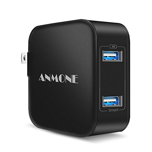 24W Dual USB Travel Wall Charger, ANMONE 2-Port Fast Charging Foldable Plug with Smart ID Technology Mobile Phone Charger AC Adapter for Compatible iPhone X/8//7, iPad Pro, Samsung S8,HTC, LG (Black)