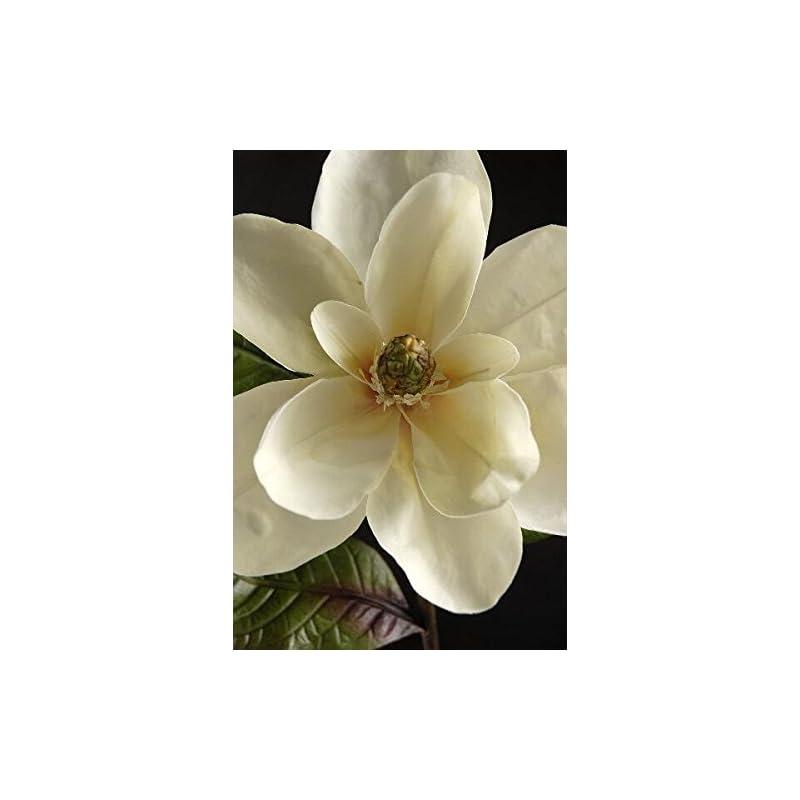 """silk flower arrangements richland magnolias deluxe white silk 34"""" set of 6"""