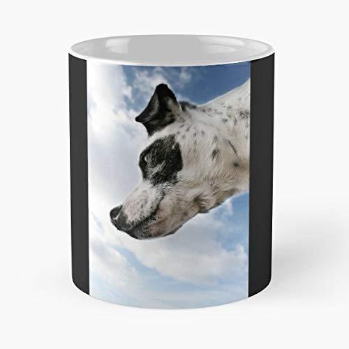 Alex Preiss Cool Skirt Collection Portfolio_dog Portfolio_photography Dog Gift Coffee/tea Ceramic Mug Father Day