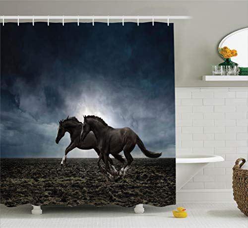 Ambesonne Animal Decor Collection, Couple Horses Running on the Plowed Field in Stormy Dark Weather Sky Equestrian Concept, Polyester Fabric Bathroom Shower Curtain, 75 Inches Long, Blue Black