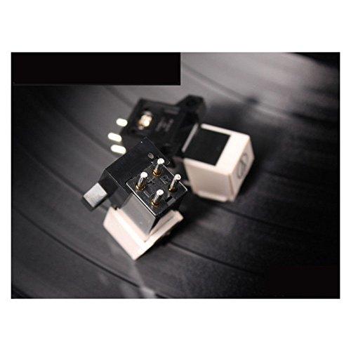 FidgetFidget Gramophone Accessories Stylus Needle For Phonograph Turntable Gramophone Record by FidgetFidget (Image #1)