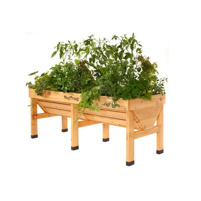 Veg Trugs Novelty Raised Garden Size: Medium For Sale