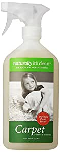 Naturally It's Clean Carpet Spot-Treat, 16-Ounce (Pack of 6)
