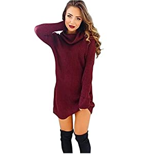 Gillberry Womens Casual Long Sleeve Jumper Turtleneck Sweaters Coat Blouse Dress (XL, Red)