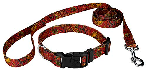 Country Brook Petz   Fire Paisley Deluxe Dog Collar and Matching Leash Set (Large)