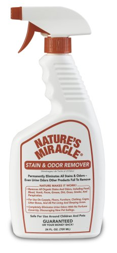 Dog Stain and Odor Remover Size: 1 Gallon, My Pet Supplies