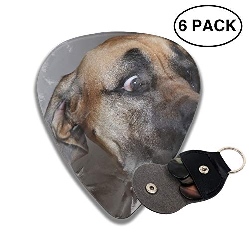 - Animal Great Dane Dogs Muzzle Funny Guitar Picks Various Rock Bands Collection 0.46mm 0.71mm And 0.96mm, 6pcs
