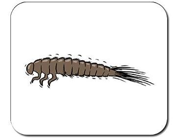 Mauspad Mit Der Grafik Larve Insekt Schwarz Teppich Kafer Bug