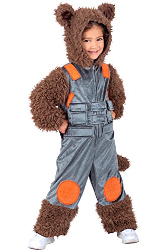 Princess Paradise Rocket Raccoon Child Costume-