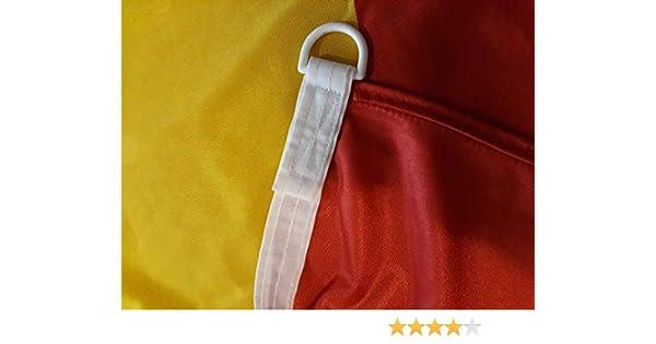 FahnenMax – Bandera de España, 150 x 250 cm Banderas: Amazon.es: Jardín