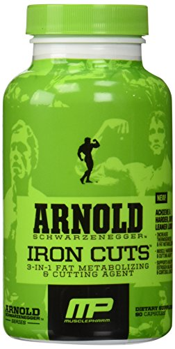 Muscle Arnold Schwarzenegger Metabolizing Cutting