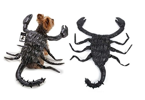 Creepy Crawlies Costume (Black Scorpion Dog Costume Realistic Creepy Crawly Suit Size Small)