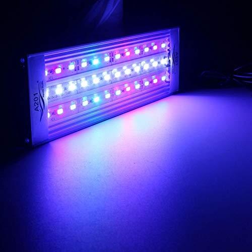 EUPlug, 12 W20 cm  20 25 30 31 35 36 40 45 50 60 cm LED subacqueo RGB 5730 SMD acquatico corallo, acquario marino, scogliere