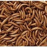 Vers de farine séché de 2kg pour oiseaux sauvages