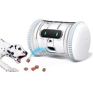 brinquedos-interativos-para-caes-filhotes-varram-pet-fitness-robot