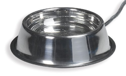 Allied Stainless Steel Heated Pet Bowl, 5-Quart by Allied Precision Industries