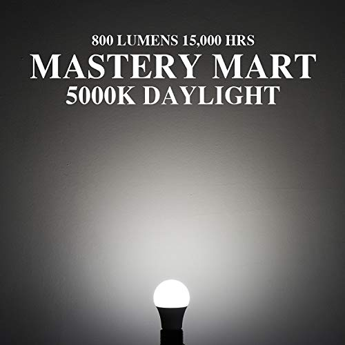 Mastery Mart 10 Pack of A19 LED Light Bulbs
