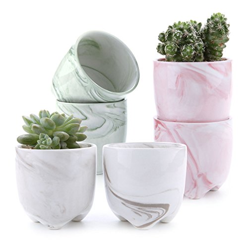 T4U 2.25″ Ice Cream Serial Modern Sucuulent Cactus Plant Pots Flower Pots Planters Containers Window Boxes with Small Hole Set of 6 For Sale