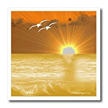 Edmond Hogge Jr - Birds - Pelicans and Sunsets - 6x6 Iron on Heat Transfer for White Material (ht_204502_2)