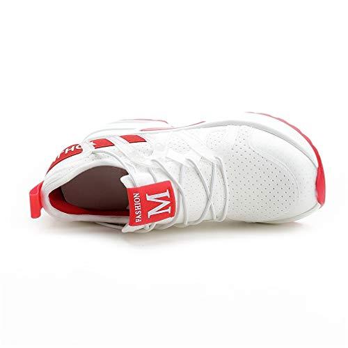 Donna Up Da top Scarpe Lace Corsa amp; Un Allenamento Mesh Yan Sneakers Low Fitness E Spring Sportive Cross Fall Atletica 17wARtqW