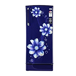 Godrej 221 L 3 Star Inverter Direct-Cool Single Door Refrigerator with Jumbo Vegetable Tray (RD EDGESX 236C 33 TAI PL PR…