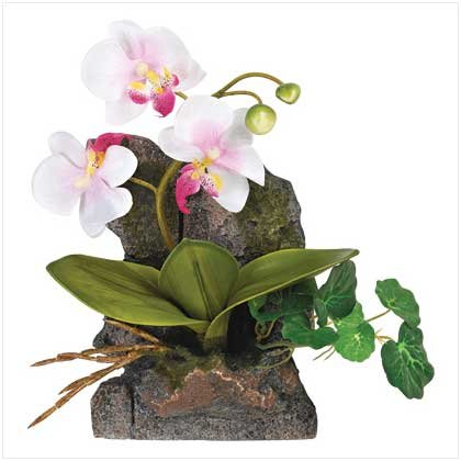 Amazon.com: Everlasting Orchid Wall Decor - Style 39681: Home ...