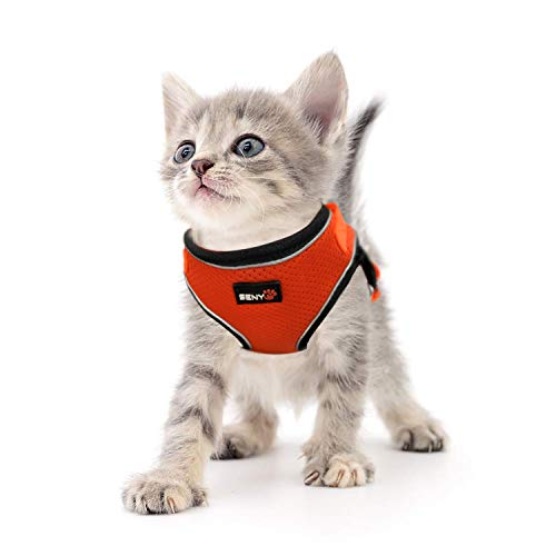 SENYEPETS Breathable Mesh Cat Harness and Leash with Durable D Ring and Metal Lock System, Escape Proof Vest with Adjustable Straps for Puppy Kitty Rabbit.(XL, Orange)