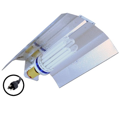 41PHgMVoiuL 150 Watt CFL Compact Fluorescent 6400K Horizon Flash Wing Kit for Veg/Clone