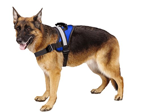 EXPAWLORER Big Dog Harness Soft Reflective No Pull Blue Size XL 36-46inch