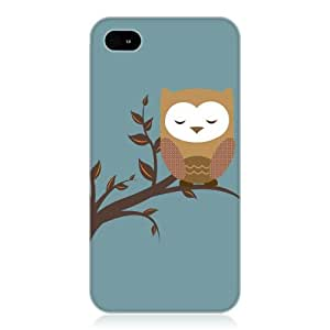 Owl on The Tree Branch with Blue background iphone Case Cover Fits iphone 5 5S