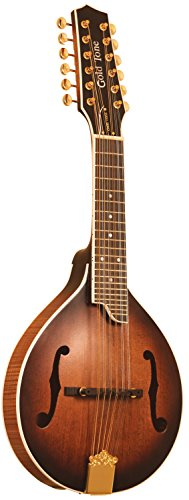 Gold Tone GM-12+ 12-String Guitar Mandolin with Pickup by Gold Tone