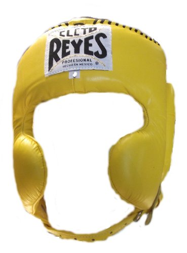 CHEEK PROTECTION HEADGEAR
