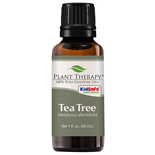 Plant Therapy Tea Tree Essential Oil | 100% Pure, Undiluted, Natural Aromatherapy, Therapeutic Grade | 30 milliliter (1 ounce)