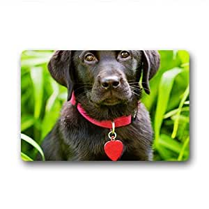 "Custom Labrador Doormat Outdoor Indoor 23.6""x15.7"" about 59.9cmx39.8cm"