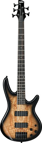 - Ibanez 5 String Bass Guitar, Right Handed, Natural Gray Burst (GSR205SMNGT)