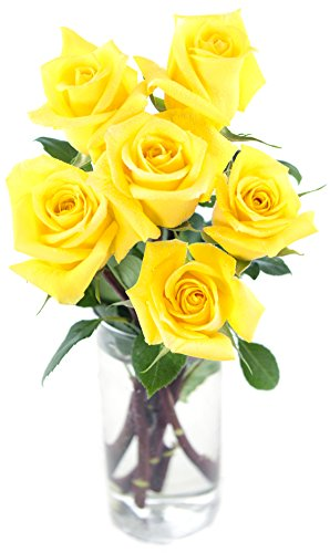 Bouquet of Long Stemmed Yellow Roses (Half Dozen)