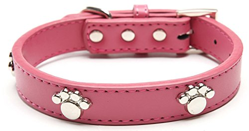 Pink Dog Collar with Genuine Leather Adjustable Collars for Small Dogs Fits Neck Size 8