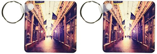 3dRose On The Mall - stylized photograph of shopping arcade located in Ann Arbor, Michigan - Key Chains, 2.25 x 4.5 inches, set of 2 - Mall Arbor Ann