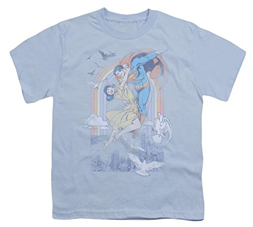 Youth: DC-Rainbow Love Kids T-Shirt Size YL by DC