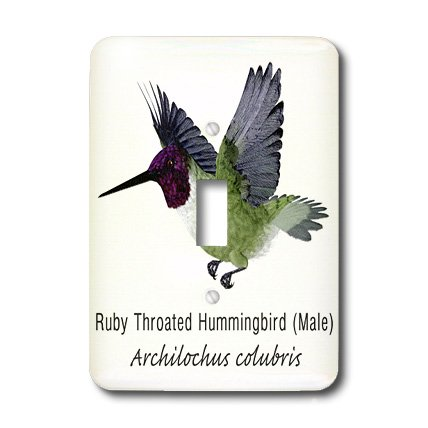 Hummingbird Toggle Light Switchplate - 3dRose lsp_37147_1 Ruby Throated Hummingbird Male Single Toggle Switch