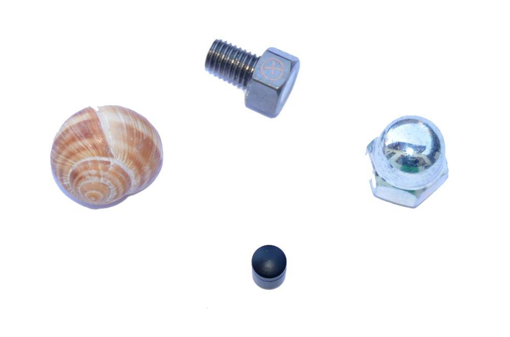 Hutmutter geo-versand Unisex Adult 4er Set Geocaching Verstecke f/ür die Stadt-Weinbergschnecke Nano und magnetische Schraube mit Logstreifen