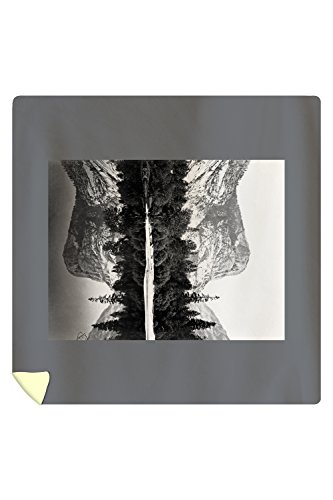 Yosemite National Park, Mirror Lake Photograph (88x88 Queen Microfiber Duvet Cover) by Lantern Press