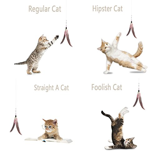 Onever teaser cat catcher retractable fishing pole wand for Retractable cat toy