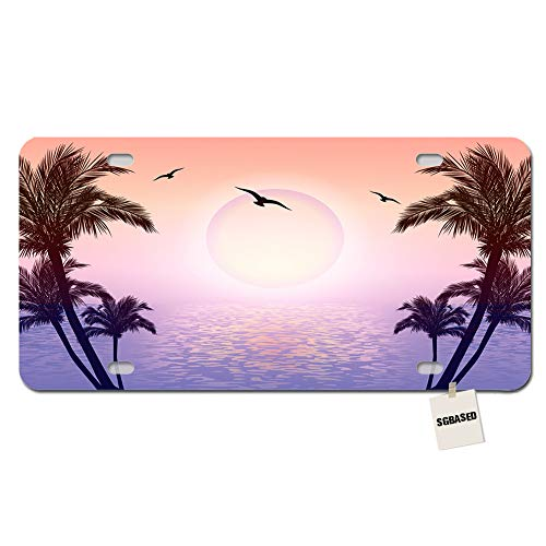 SGBASED License Plate Novelty License Plate Cover Metal Auto Car Tag 4 Holes(12 X 6 inches) - Beautiful Tropical Scene